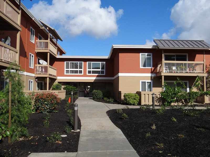 Walkway and buildings at Eden Lodge Apartments